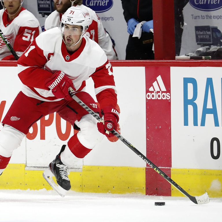 Red Wings Preview Hockey