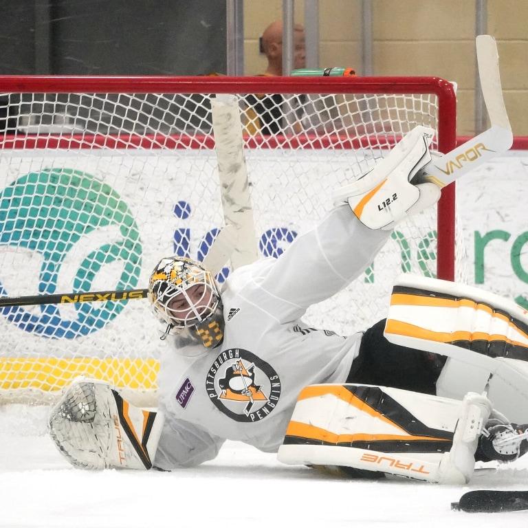 Penguins Begin Hockey