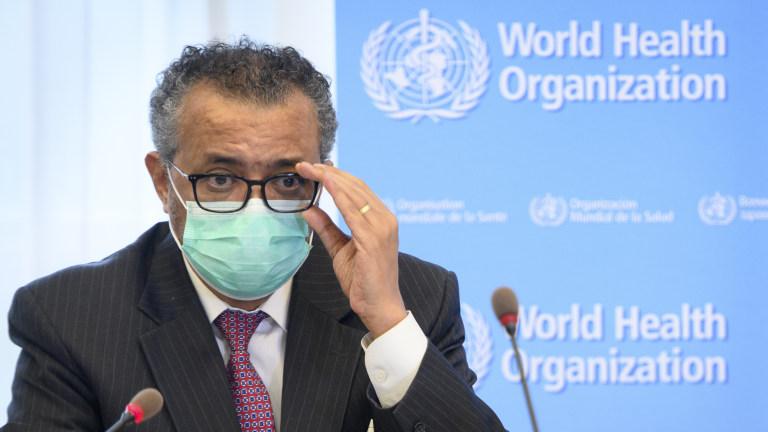 WHO Virus Origins